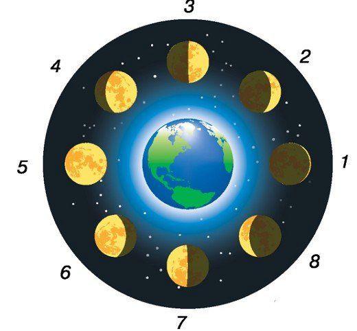 Будова Місяця і його характеристики